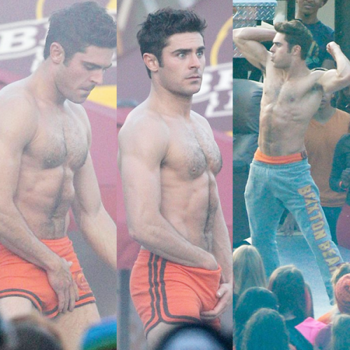 Zac Efron Le Gay 2