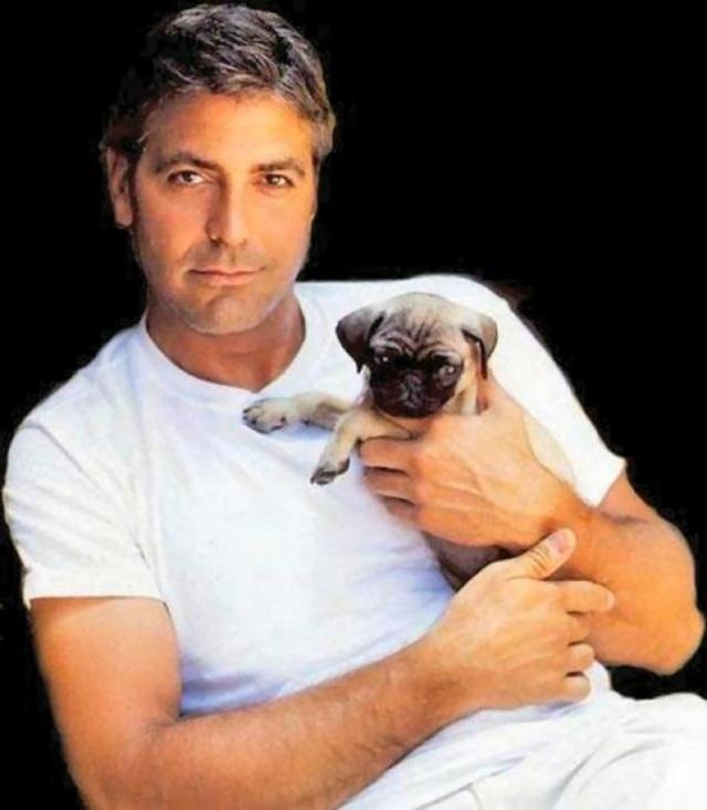 George Cloony Gay 74